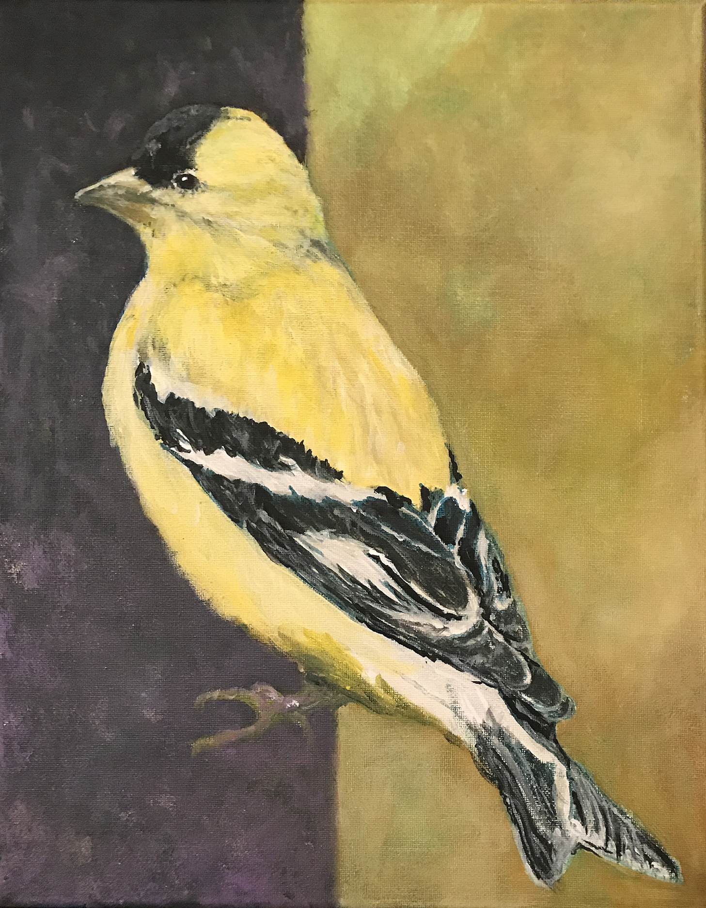 Painting of a bird native to Maryland, American Goldfinch