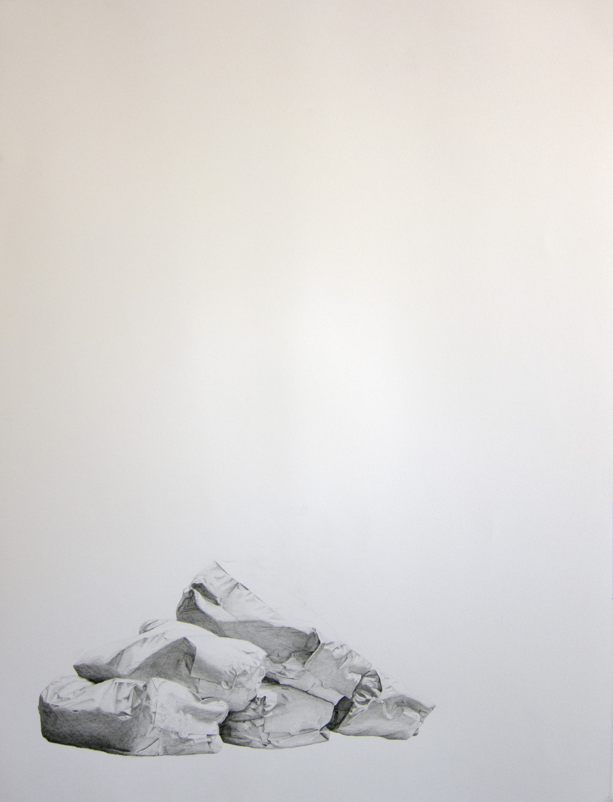 Photo-Realism drawing of leaf bag forms