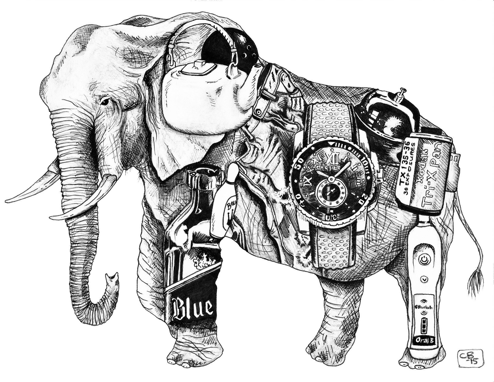 Elephant, Objects, Drawing, Detail, Animal, Colored Pencil, Marker