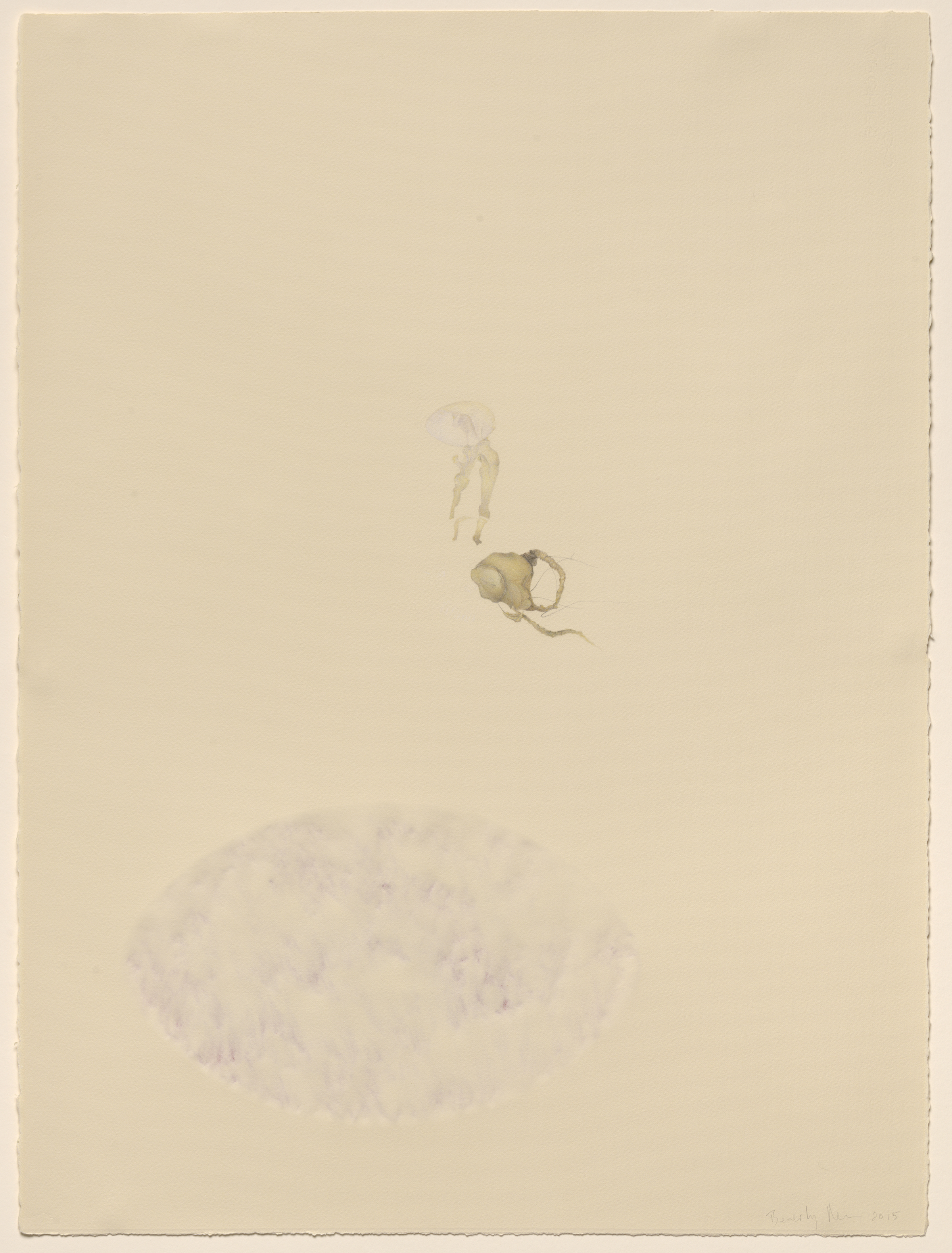 Representational drawing of a small heart and an amniotic sac, centered, on Arches paper, scraped away on back, pigment added