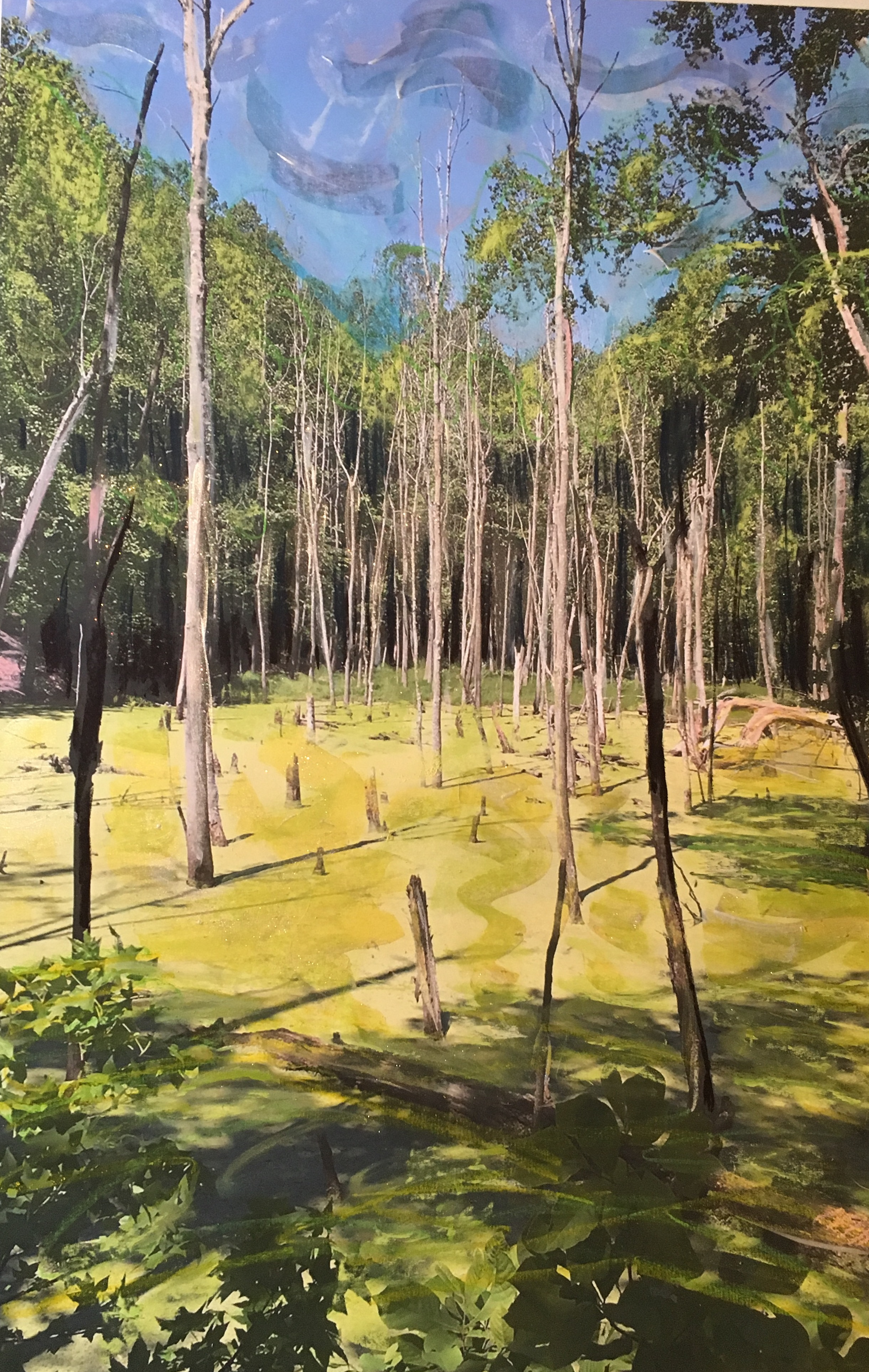 unusual bright green water in a swampy area