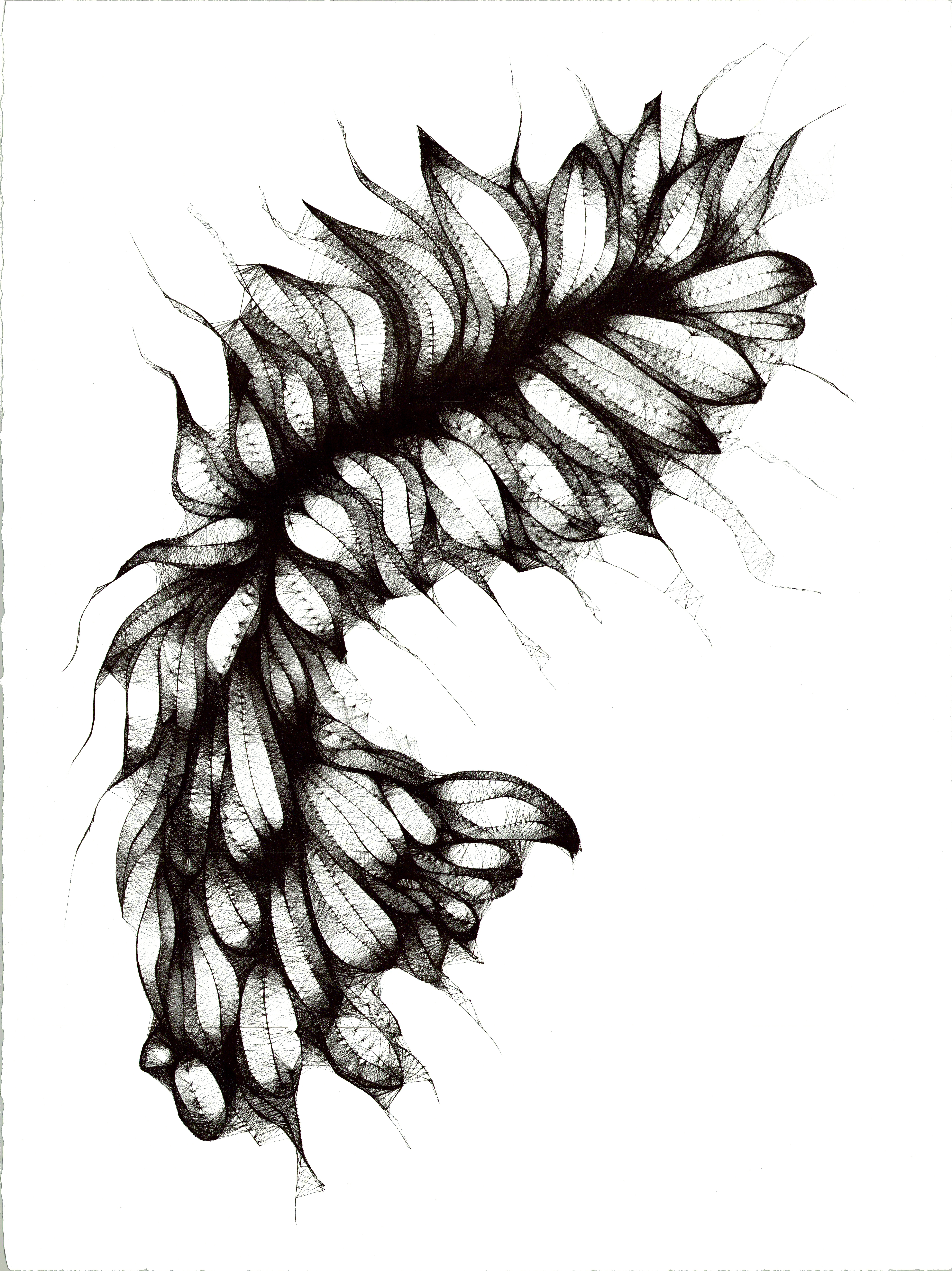 Abstract pen drawing