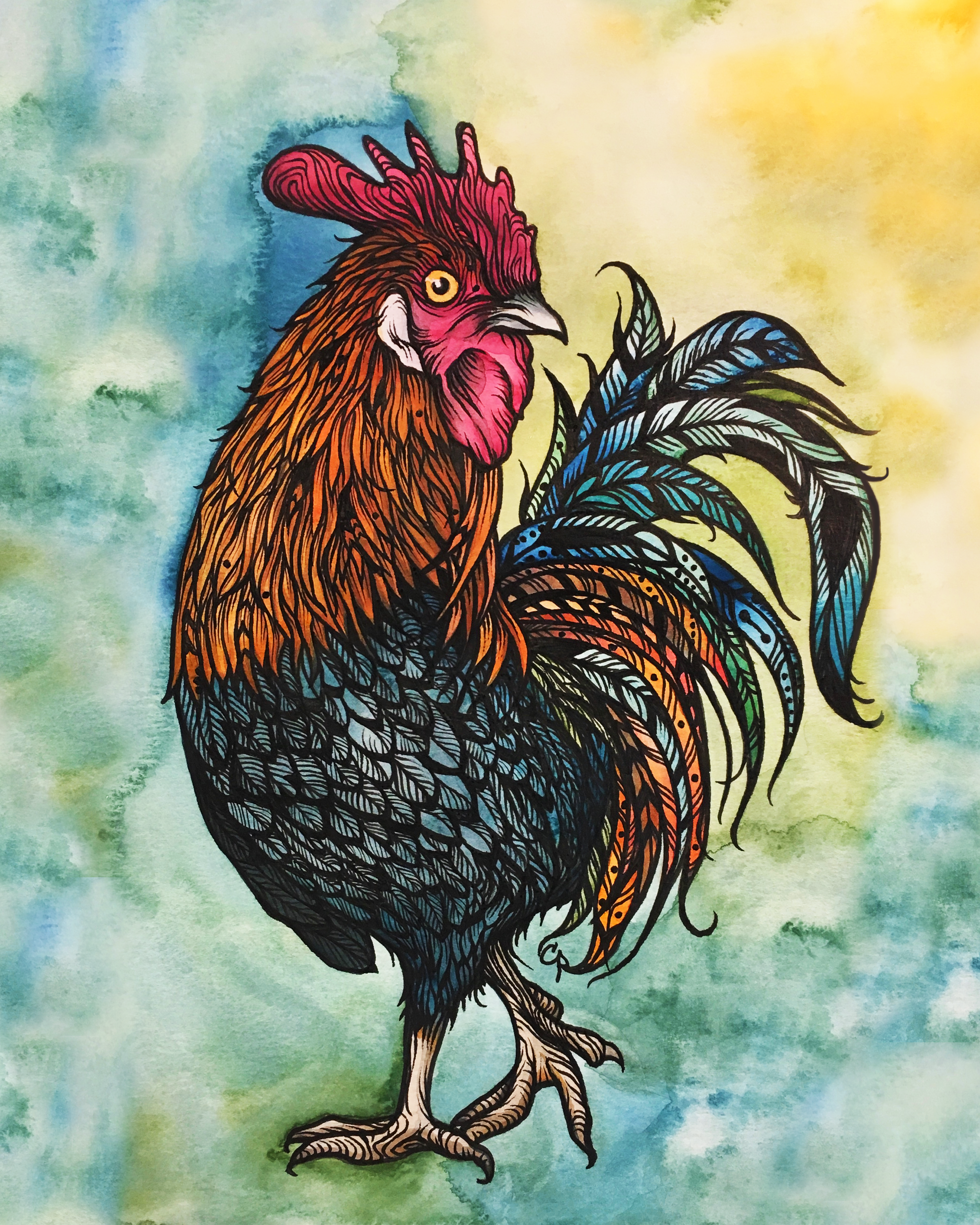 Le Coq (The Rooster) Illustration by Cat Paschal Dolch