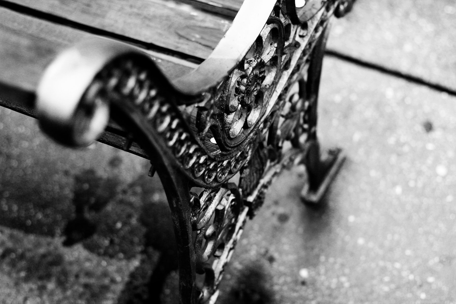 black and white bench photo