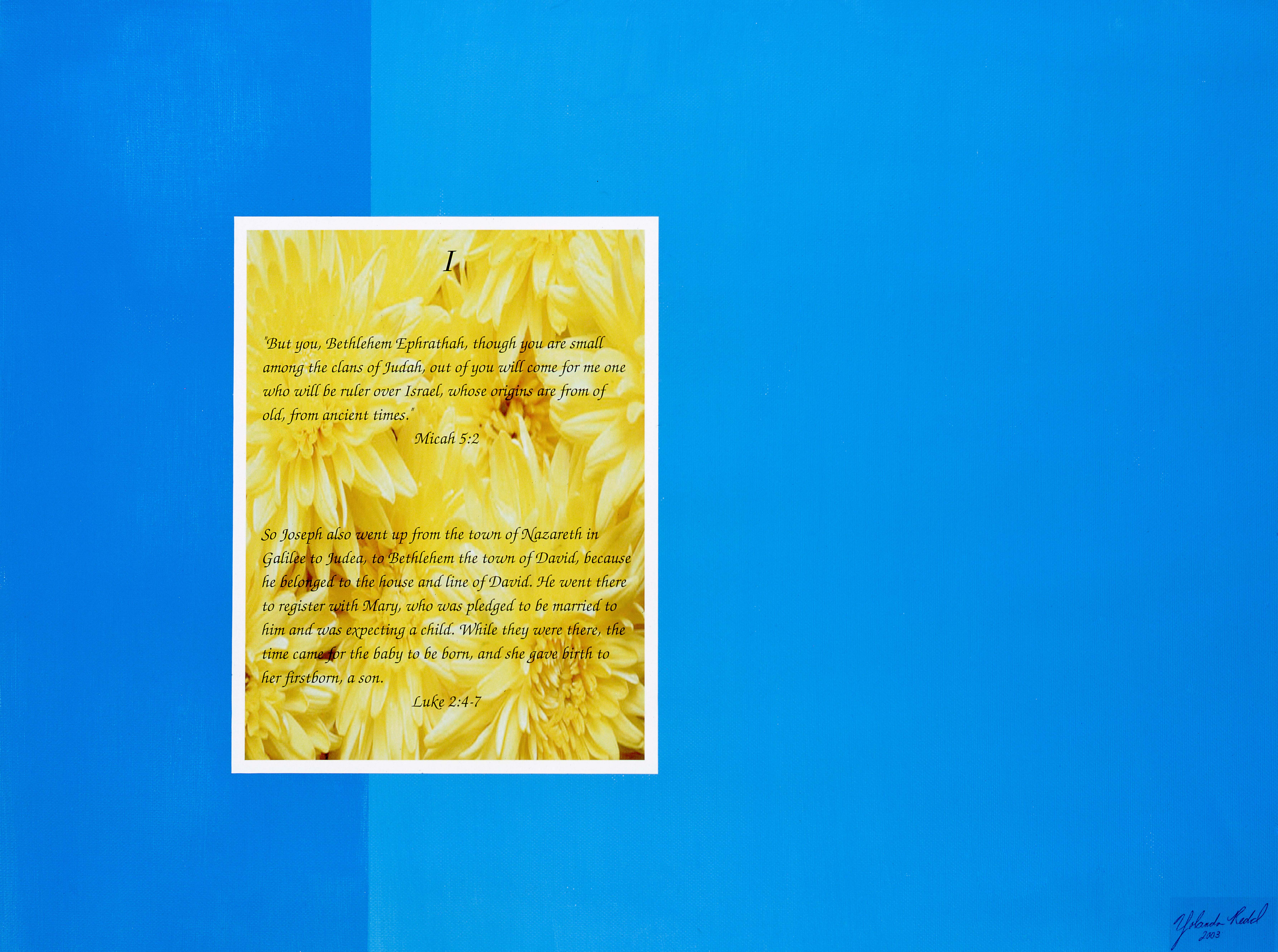 prophesy and fact, blue, yellow, flower,